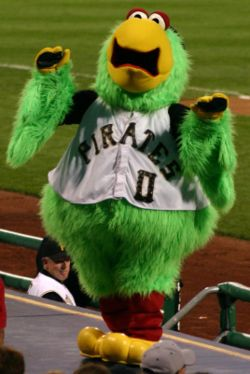 pirates-parrot | Baseballisms.com