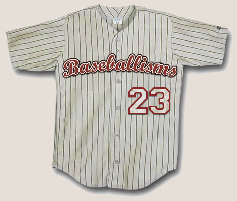Authentic Baseballisms Game Jersey number 23 | Baseballisms.com